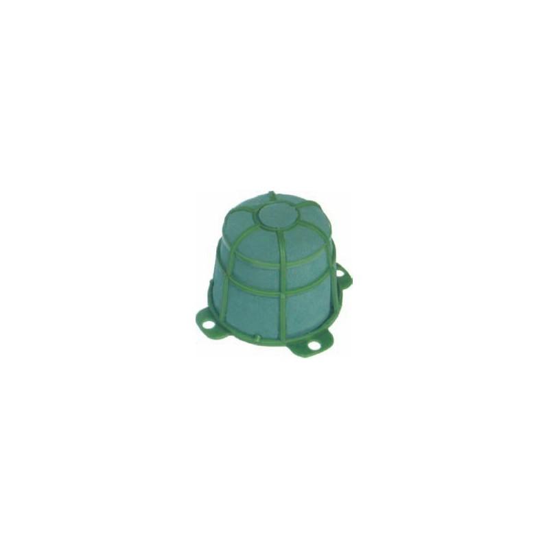 Żółwik duży | Victoria®