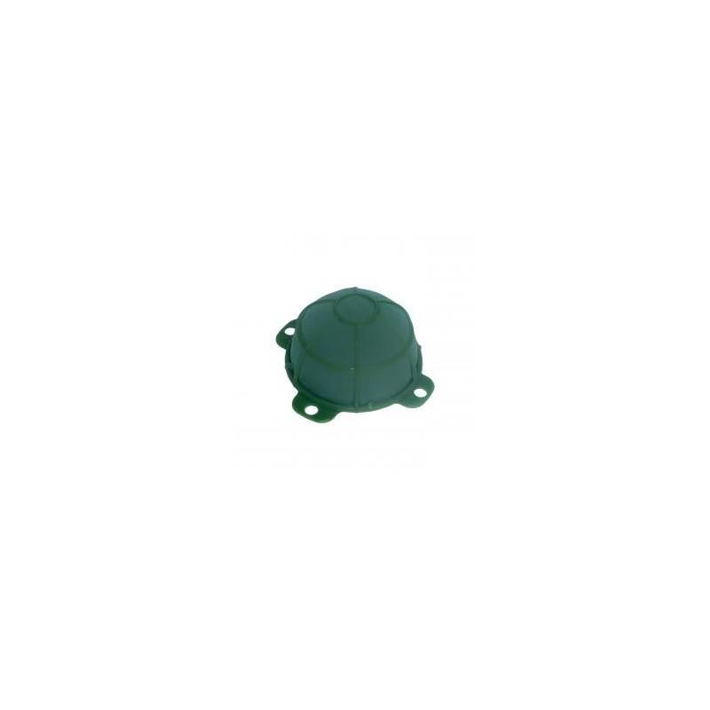 Żółwik średni | Victoria®