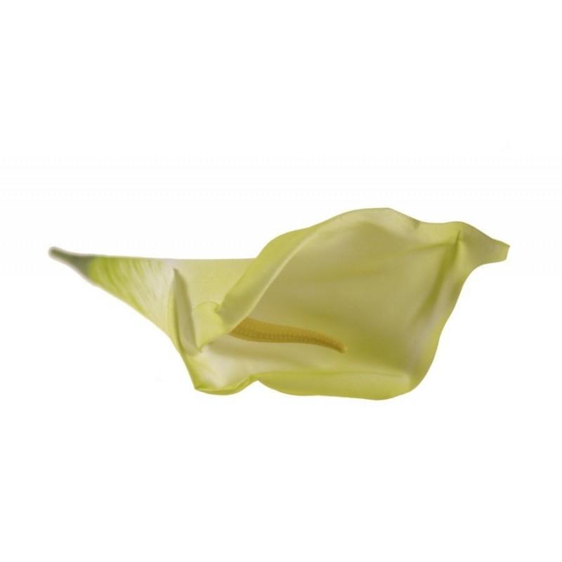 Kalla - kwiat wyrobowy