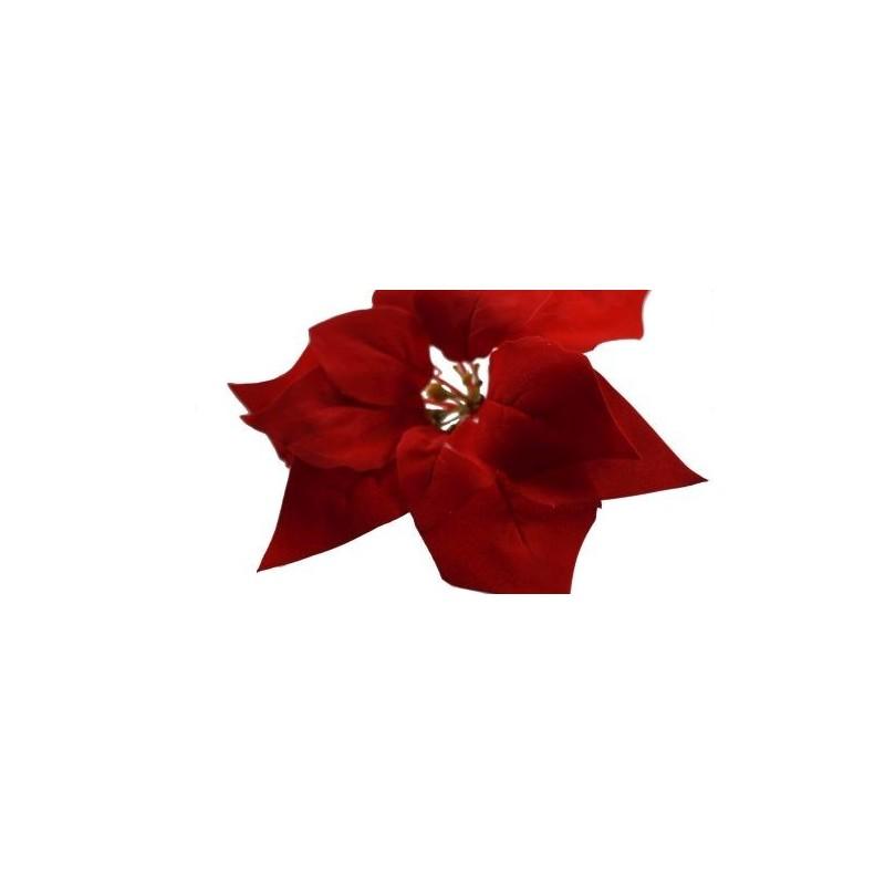 Gwiazda betlejemska-czerwona