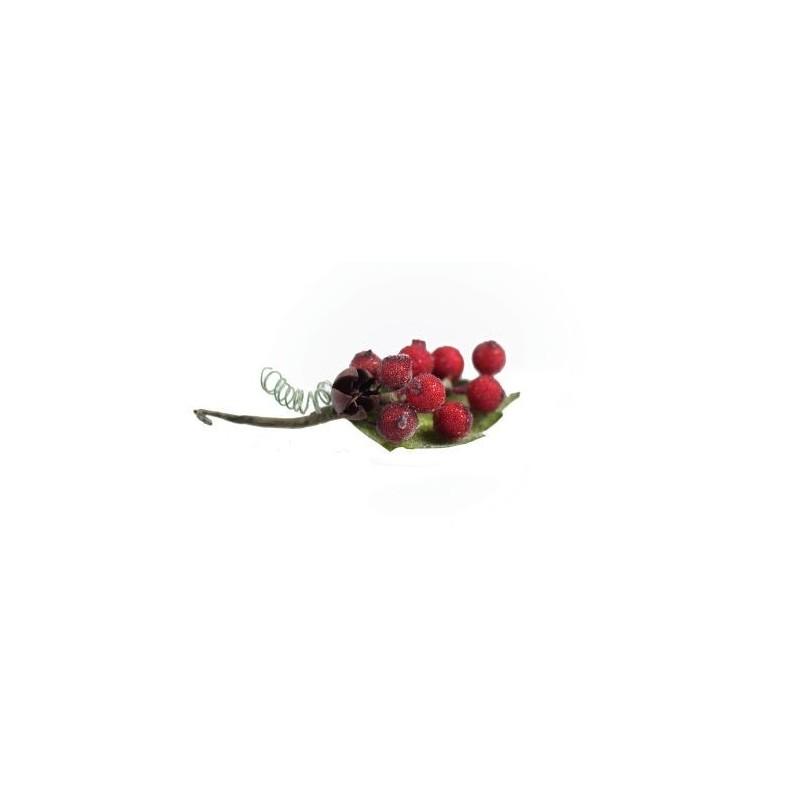 Czerwona porzeczka-oszroniona(gałązka)