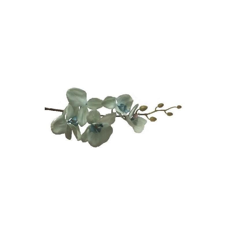 Storczyk silikonowy - zielony jasny