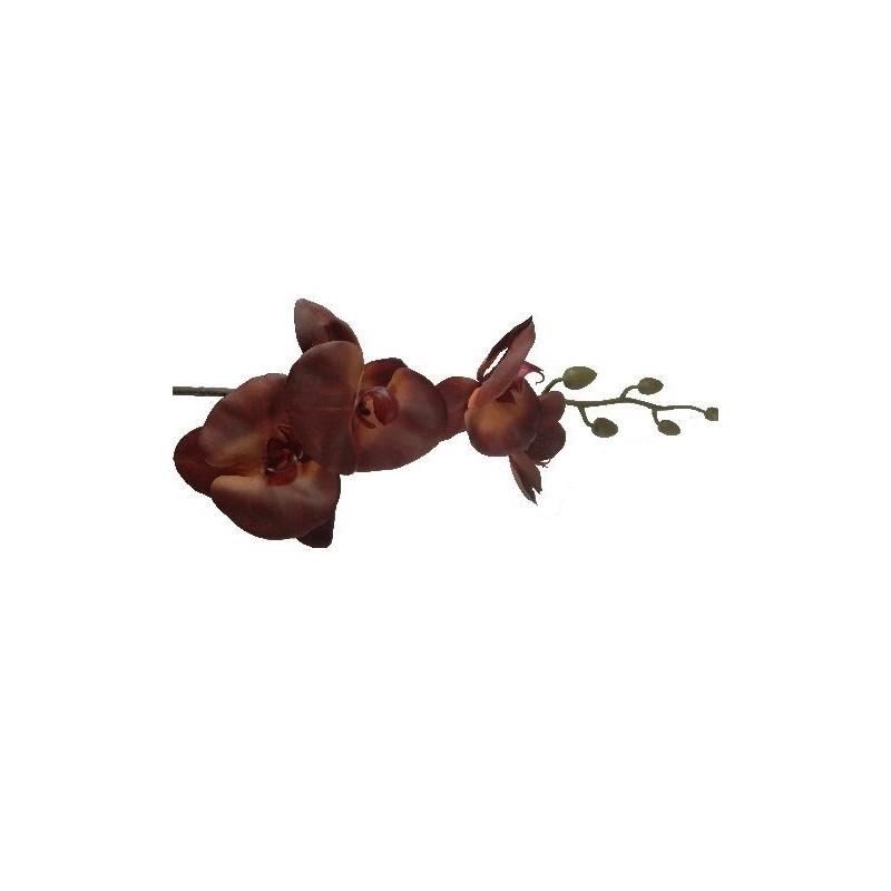 Storczyk silikonowy - brązowy