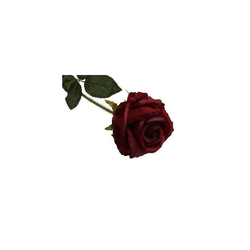 Róża długa - czerwona BD