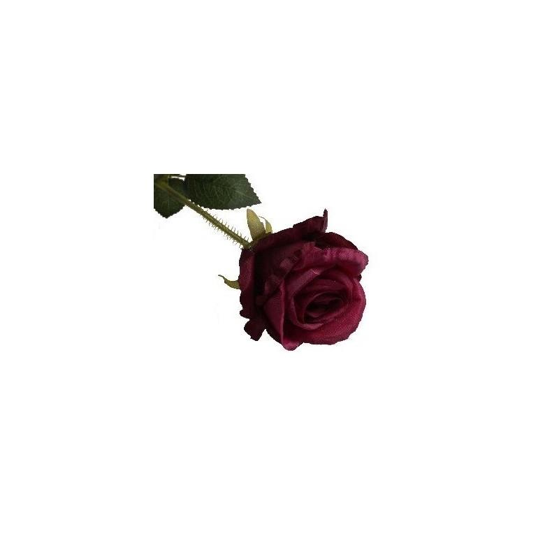 Róża długa - burgund BUR