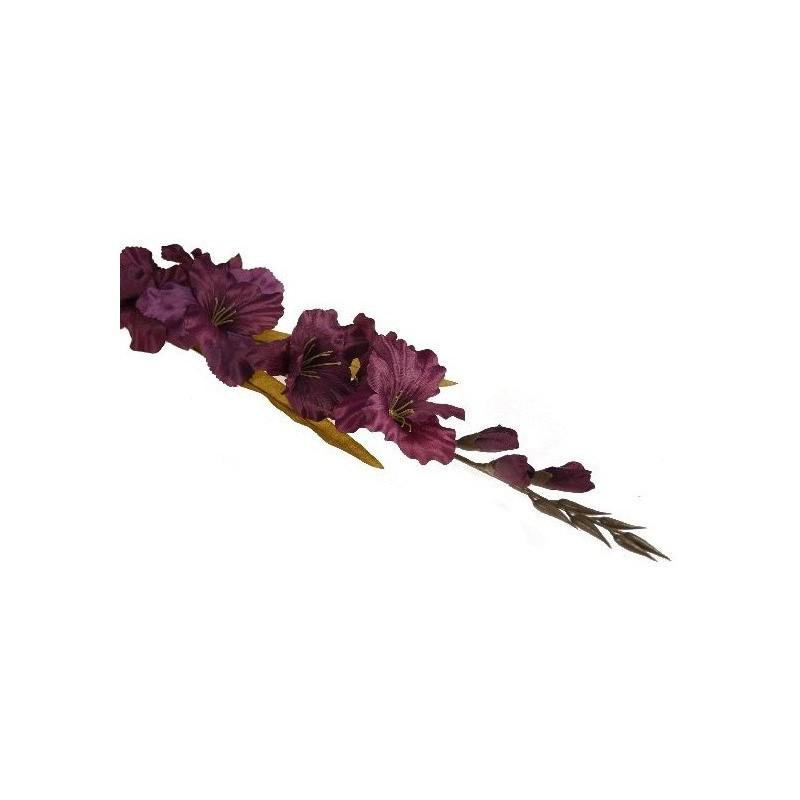 Mieczyk gladiola- fioletowy nasycony