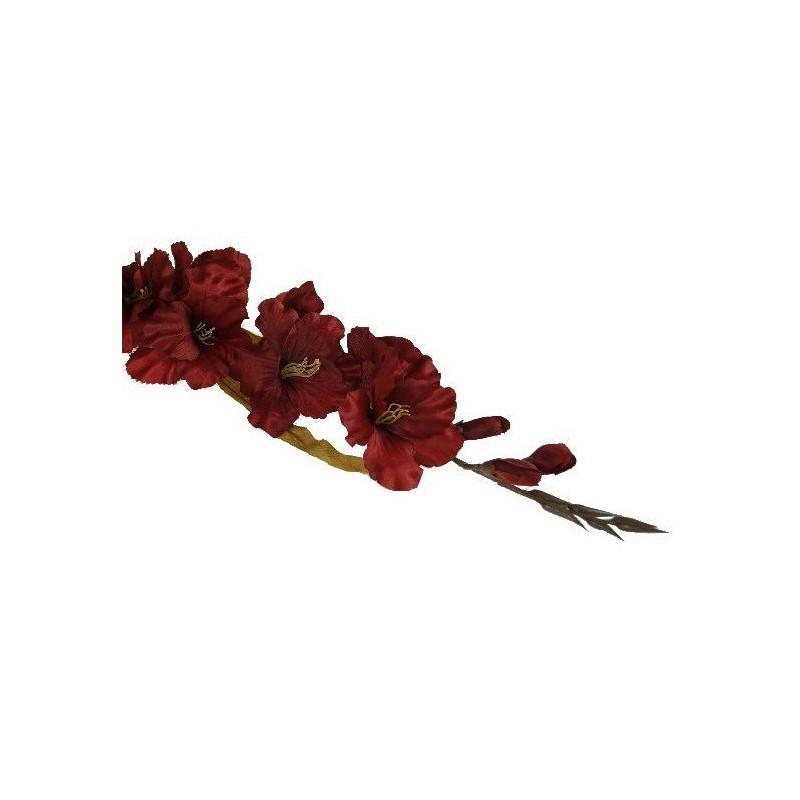 Mieczyk gladiola- intensywna czerwień