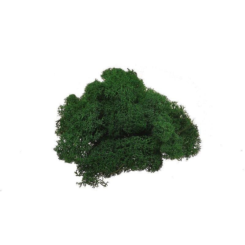 Mech chrobotek 100g  - ciemna zieleń