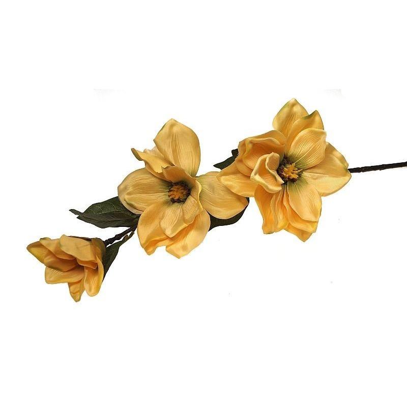 Magnolia - żółta