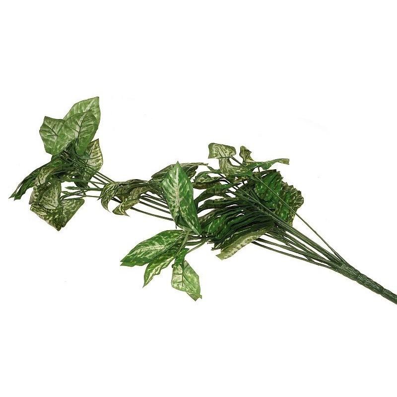 Bluszcz - liście