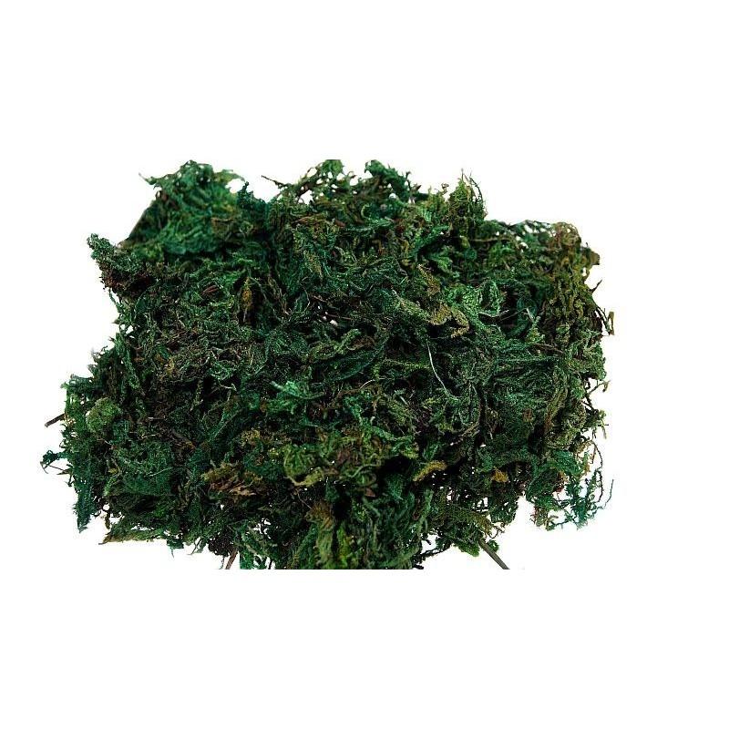 Mech - zielony ciemny (0,5 kg)