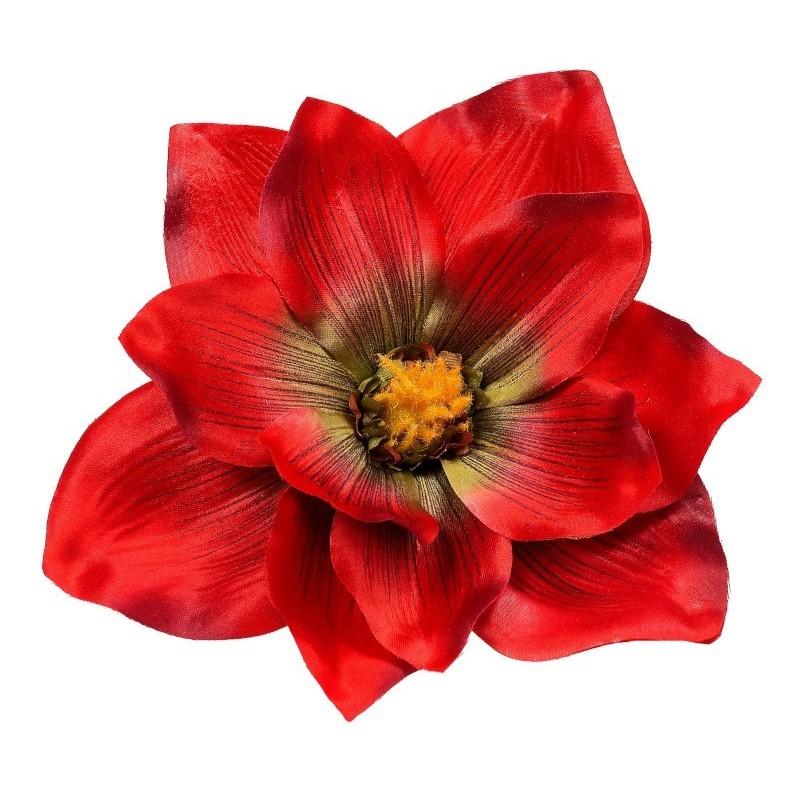 Magnolia czerwono-zielona - kwiat wyrobowy
