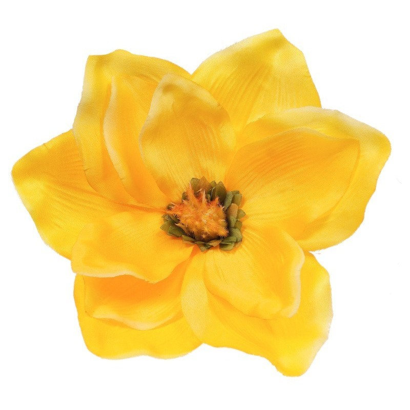 Magnolia żółta - kwiat wyrobowy