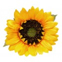 Gałązka słonecznika 77 cm