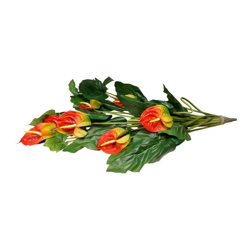 Kwiat anturium