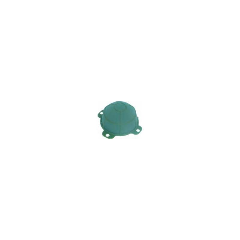 Żółwik mały | Victoria®