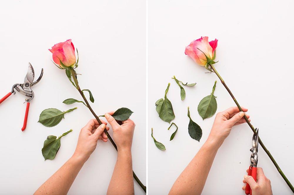 dekoracja w gąbce florystycznej