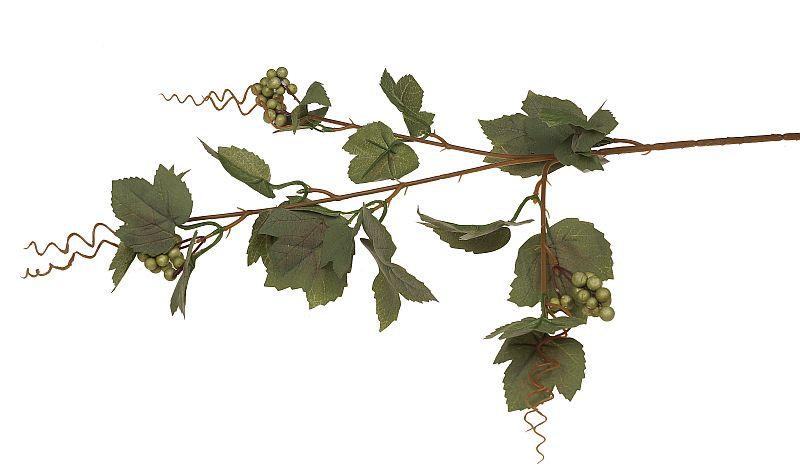 liście winogrona