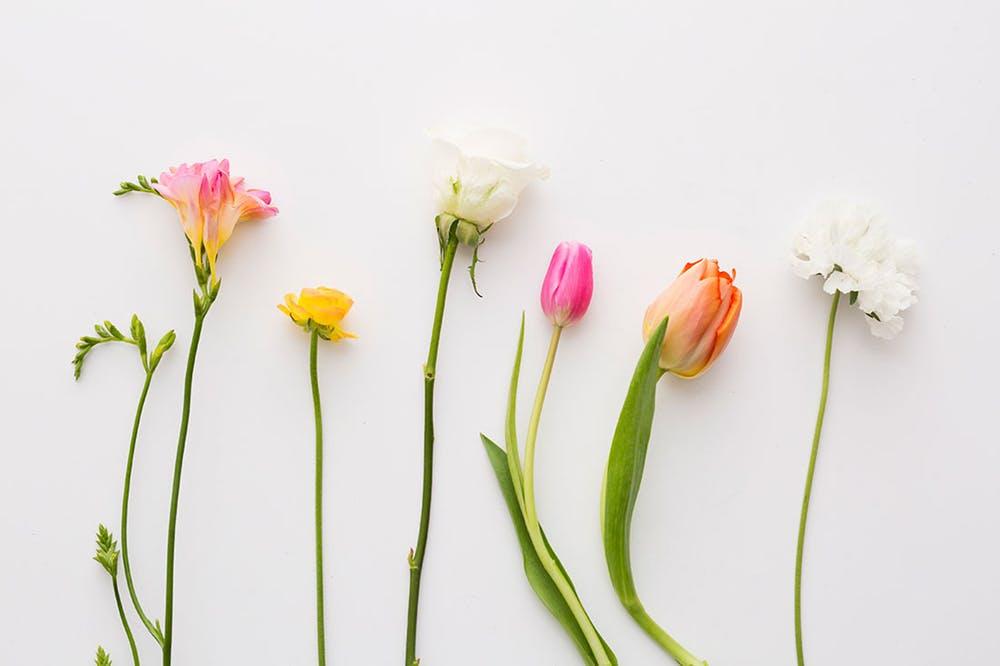 kwiaty w gąbce florystycznej mo krej