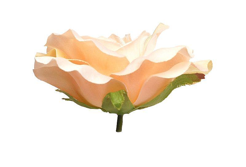 brzoskwiniowa róza wyrobowa