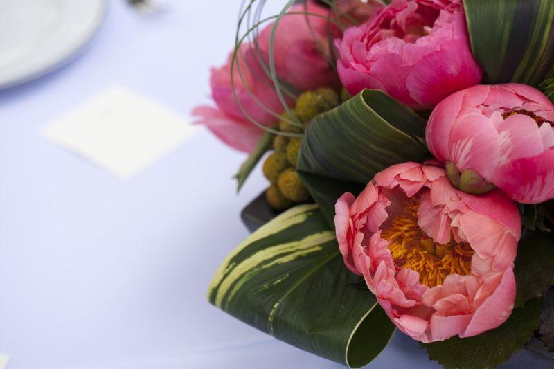 własna kwiaciarnia